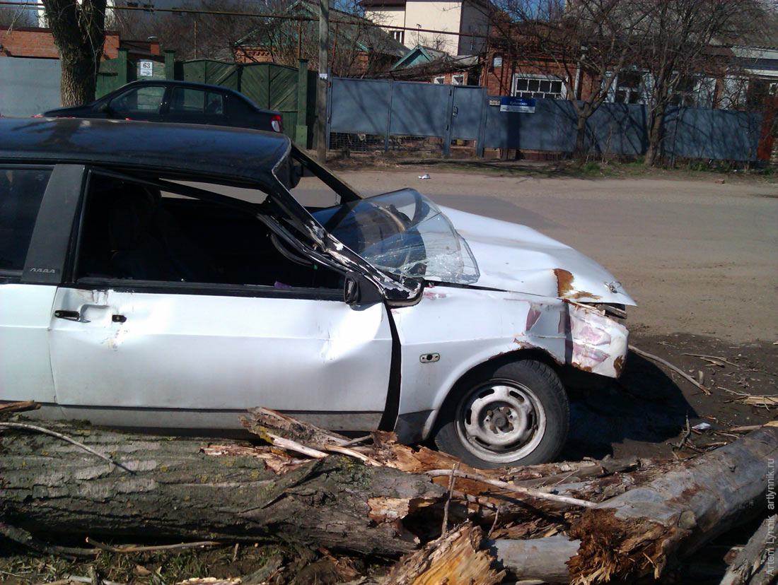car, crash, tree, vehicle