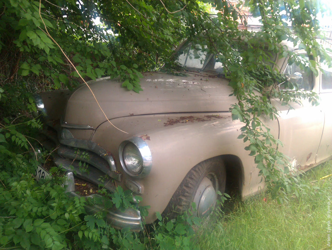 car, greenery, old, vehicle