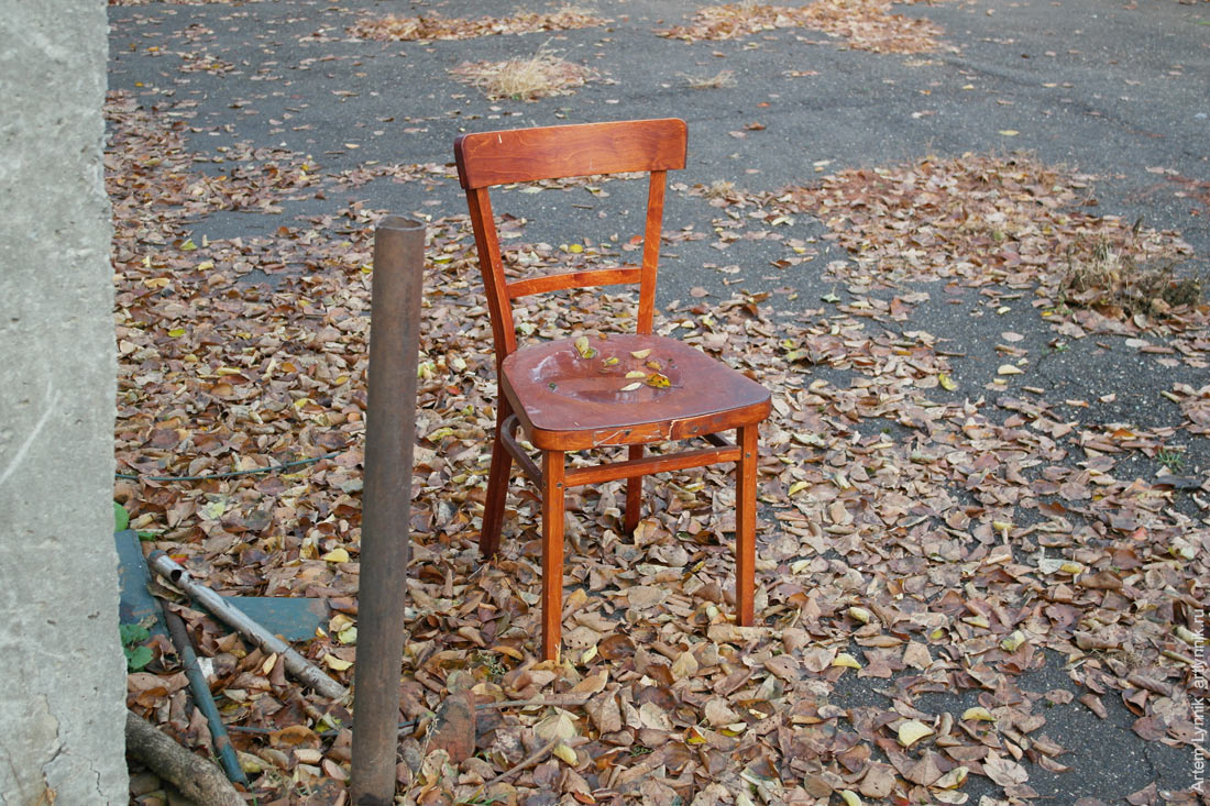 chair, leafs